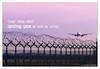 Landing Ideas! (Michele Cannone) Tags: sky flying airport media action aviation transport gear aeroporto landing cielo ideas aereo idee mezzi trasporti