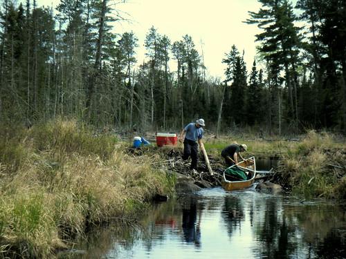 Beaver Dam Mini-Portage