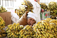 Sleeping-Banana (For91days) Tags: travel food fruits lunch cuisine blog market mark mercado local veggies centralmarket sucre mercadocentral cowsnout sucreblog