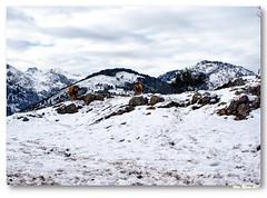 Nas montanhas de Alles...