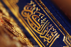 (11/365 )The Holy Quran (Talal-Q8) Tags: macro islam holy   quran the
