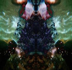 subacqueo_ effetti ottici _ immaginazione_ (Filte. Virginia) Tags: verde green colors monster photoshop fantasia astratto animali disegno rorschachtest astrattismo subacqueo illusioni illusioniottiche effettiottici maltrattate