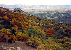 early fall, the Wichita Mountains (spysgrandson--thanks for 2,000,000 views!) Tags: autumn mountains fall oklahoma minolta elkmountain wichitamountainswildliferefuge supershot impressedbeauty supershotinvited spysgrandson oklahomanaturepics