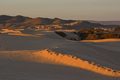 That last bit of light (Damian Gadal) Tags: california geotagged nikon dunes january nikond100 d100 2009 sanddunes oceano