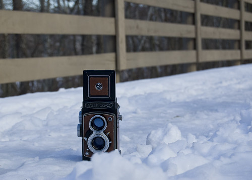 Yashica snowbound