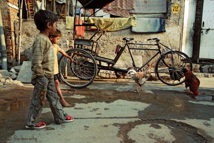 Il est 6h Jaïpur s'éveille