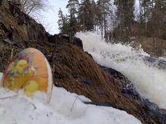 Hunt Easter Bunny Eggs in Norwegian Woods #7