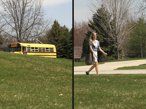 bus bridget diptych