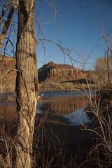 _DSC6355 (newelpf) Tags: park national needles the canyonland 2009moabutah