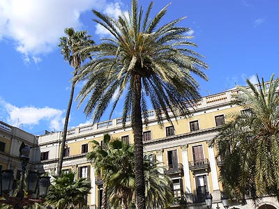 plaza del rei.jpg