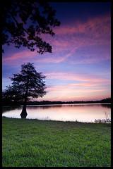 Same Ol' Cyprus, Same Great Spot (Casey Morris) Tags: sunset sky tree water cyprus explore kingwood lakehouston atascocita graduatedneutraldensity caseymorris