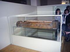 Razstava faraonov Cankarjev dom marec 2008 (RPS d.o.o.) Tags: rps razstava