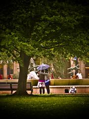 Shared Umbrella (garryknight) Tags: canon creativecommons hydepark london s3 lightroom share sharing umbrella woman