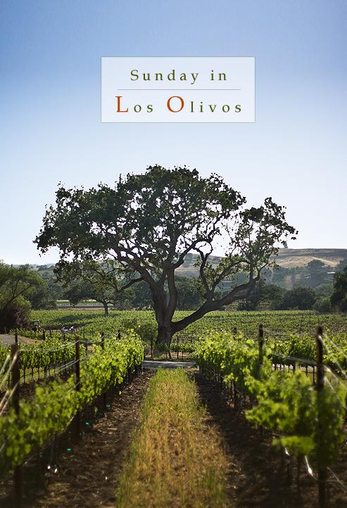 Sunday in Los Olivos, Los Olivos