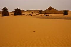 (650) verlassene Oase (avalon20_(mac)) Tags: africa travel sky sahara nature geotagged sand desert egypt 500 wüste misr eos40d schulzaktivreisen