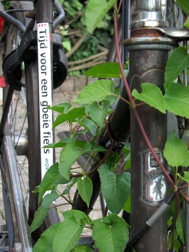fietswrak amsterdam 15