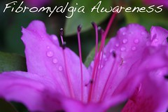 fibromyalgia pain awareness, what are the symptoms