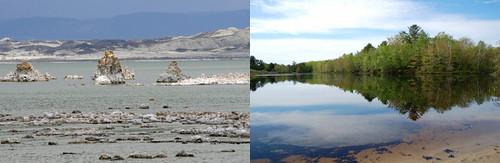 basin to beach: lake