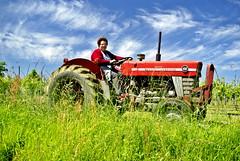 Retraites agricoles : toujours le bluff