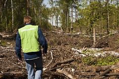 Greenpeace Russia