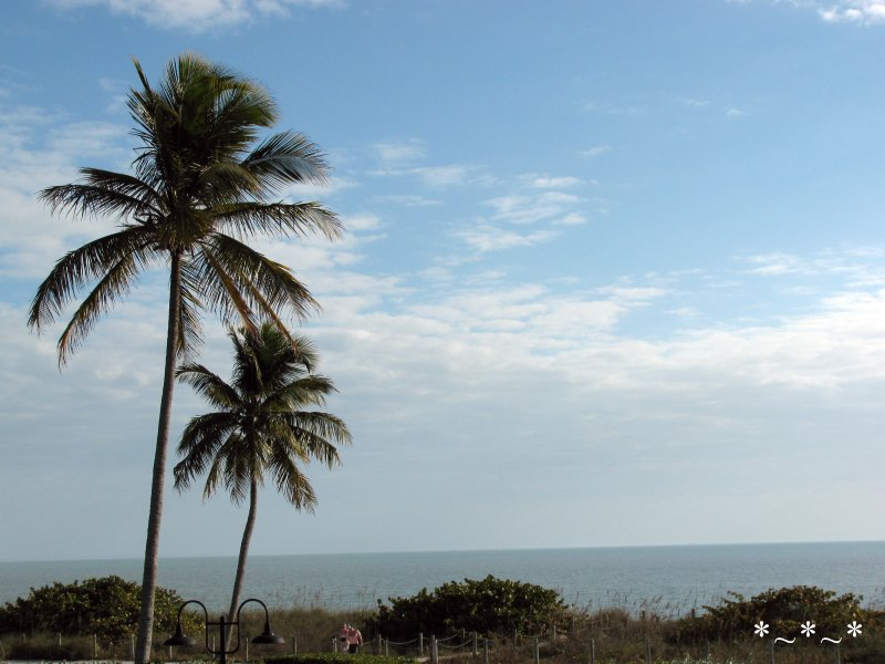 IMG_0015-View-From-West-Wind-Inn-Sanibel