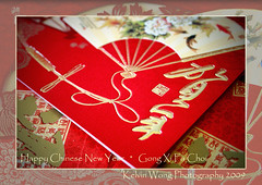 Chinese New Year Greeting Card  (Kelvin Wong (aka PiscesRomance)) Tags: red beauty festival canon wonderful amazing superb traditional chinesenewyear excellent greetingcard greeting chinesetraditional interestiness   canoneos400d canoneosrebelxti canoneoskissx kelvinwong piscesromance   yearofox chinesenewyear2009