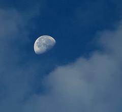Morning Moon (Purple_man) Tags: morning blue sky moon nature clouds landscape photos stock purpleman platinumphoto colorphotoaward