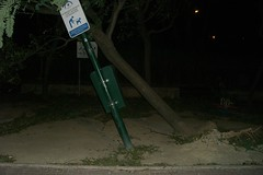 imagen de los estragos del viento en esplugues de llobregat