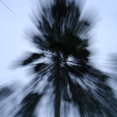 (-Antoine-) Tags: park blue trees winter snow canada abstract motion black blur tree nature forest square movement blurry noir zoom quebec snowy hiver north explosion sigma bleu arbres motionblur québec invierno neige abstraction burst 1020mm 2008 1020 foret arbre parc saguenay explode gauthier explosive forêt flou mouvement chicoutimi carré taiga exploding zoomin abstrait wintery sigma1020mm bouge zoomburst sigma1020 taïga rosaire hivernal rosairegauthier z00m saguenaylacstjean saguenaylacsaintjean z00mburst rosairegaut0086 ©antoinerouleau