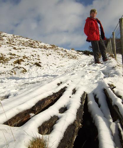 Snowy stripes 06Feb09