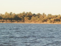 IN SALAH (jimmijoe50) Tags: voyage africa travel france sahara algerie reg sud afrique tamanrasset erg ghardaia insalah metlili ainsalah tidikelt sudalgerie