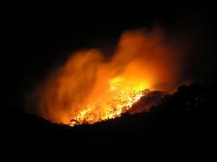 Fire on the Mountain (benrobertsabq) Tags: au australia victoria alexandra disaster vic february emergency fires 2009 bushfires cfa countryfireauthority vicfires photobymatthewroberts yeamurrindindi
