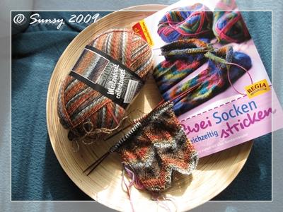 socken2009.5a