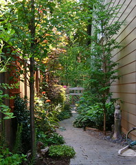 Walkway (boisebluebird) Tags: flowers plants plant flower garden michael boise walkway hosta pathway shadegarden toolson favoritegarden syringacompany michaeltoolson boisebluebirdcom httpwwwboisebluebirdcom boiselandscaping boisegardener