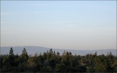 View from Los Altos Hills
