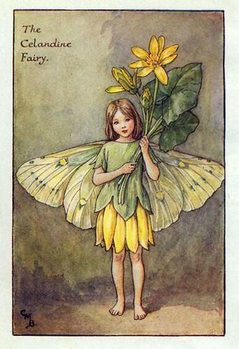 009-celandine_flower_fairy