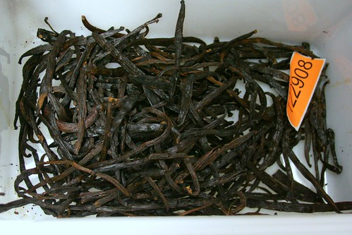 Amazing tub of biodynamic costa rican vanilla