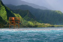The judging tower (view from the surf) at Teahupoo, Tahiti. (cookiesound) Tags: ocean trip travel vacation holiday travelling tower nature water canon photography see stand reisen flora surf waves colours fotografie urlaub natur surfing canoneos20d impressions tahiti landschaft canoneos reise sd frenchpolynesia travelphotography traveldiary travelphotos eindrcke reisefotografie travelshots reisefotos reisetagebuch reisebericht travellifestyle cookiesound surfingtahiti taehupoo soudsea nisamaier surfingteahupoo ulrikemaier travellingtahiti travellingfrenchpolynesia teahupoojudgingtower towerteahupoo waversatteahupoo