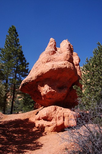 Red Canyon hoodoo