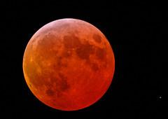 Phase de totalité de l'éclipse. (DanielD 37) Tags: sky lune nikon d70 astro astronomie éclipse totalité