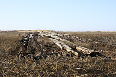 Cape Cod Wrecks Hatches Harbor Provincetown Shipwreck (Dapixara) Tags: photos capecod shipwreck hatchesharbor dapixara capecodshipwrecks provincetownhatchesharbor