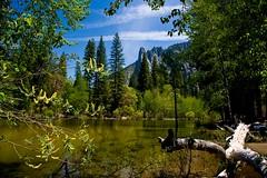 Spring Flow on Yosemite's Merced River (Cliff Stone) Tags: mountains landscape spring yosemite yosemitenationalpark springtime yosemitevalley mercedriver canonefs1785is canoneos40d