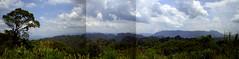 panorama-hin
