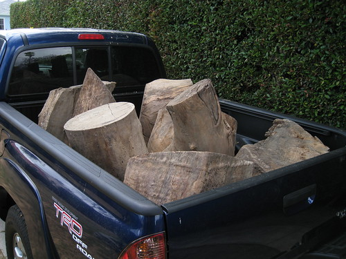 huge Eucalyptus logs in my Toyota Tacoma