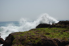 tidepool17 (timwinter79) Tags: range tidepools tidepool tidal sanpedrotidepools