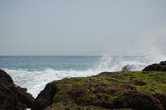 tidepool16 (timwinter79) Tags: range tidepools tidepool tidal sanpedrotidepools