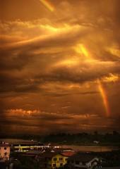 Sarawak Rainbow