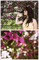 (Katie Poggio) Tags: camera old flowers inspiration nature beauty vintage purple natural bokeh retro passion brunette inspire combination combo
