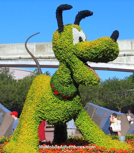 IMG_0588-EPCOT-Pluto-topiary
