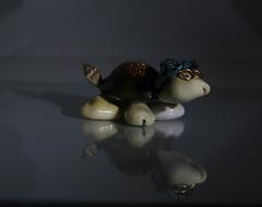Mr. Turtle (~ Lumi ~) Tags: canon model turtle reflextion 30d speedlite 430ex ledlight usblight strobist strobistingerman strobistshanghai